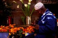 Marrakech - city of colour