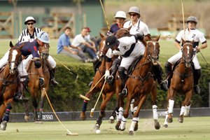 Polo is a popular sport in Sotogrande