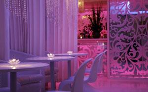 Vanilla London - Lounge bar