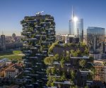 Buildings that absorb pollution